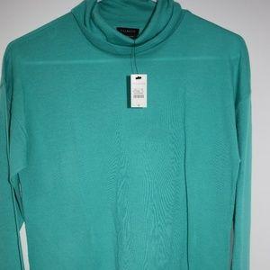 Talbots 100% Merino Wool Turtleneck Light Sweater